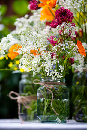Preserve cut flowers and liven droopy ones